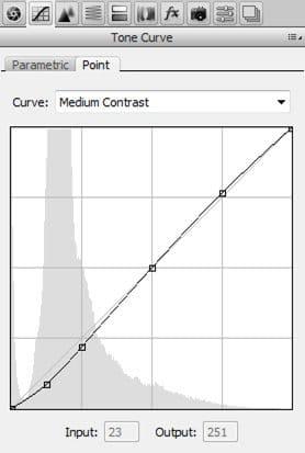 adobe-camera-raw-tone-curve-5935203